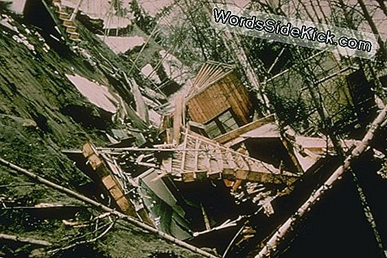 Hvordan 1964 Alaska Earthquake Shook Up Science