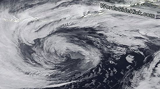 Hurricane-Force Storm Riekt Alaska