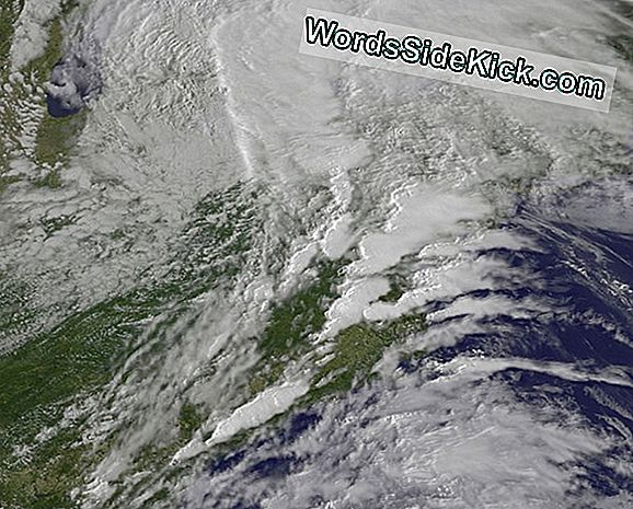Maryland Tornadoes Eyed From Space