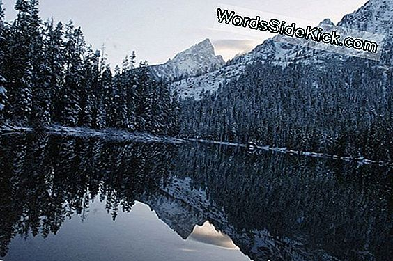 Foto: Winter Wonderland I Teton Range