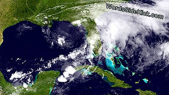 Tropical Storm Debby Breaks Record With Early Debut