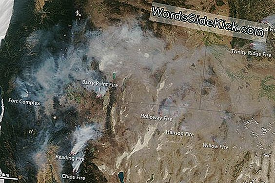 Western Wildfires Spotted From Space