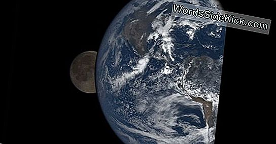 Moon Photobombs Earth I New Nasa Video