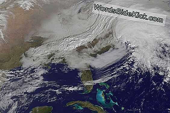 Nor'Easter Spotted Fra Space In Satellite Photo