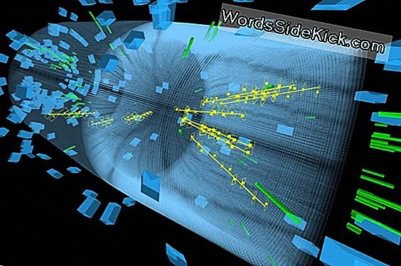 Smashing! Enorme Particle Collider Hits Data Milestone