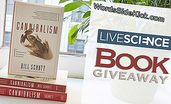WordsSideKick.com Book Giveaway: 'Cannibalism' Af Bill Schutt