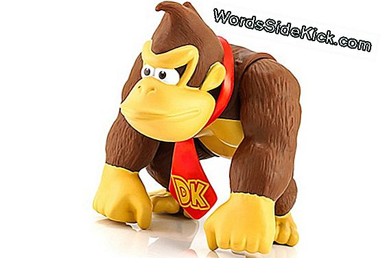 'Donkey Kong' Smashes Neuroscientists I Thought Experiment