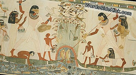Ancient Tomb Med 'Blue Monster' Mural Opdaget I Kina