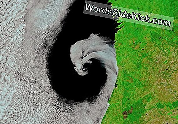 Cyclone 'Licks' Portugal Coast I Gorgeous Space Image