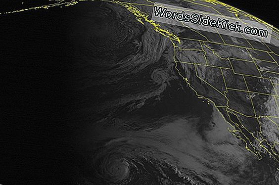Satellit Spioner Sunny Skies Over Pacific Northwest