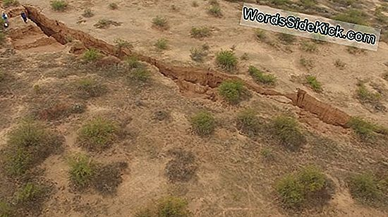Splitsville: Arizona Çölde 2 Mile-Long Crack Açıldı