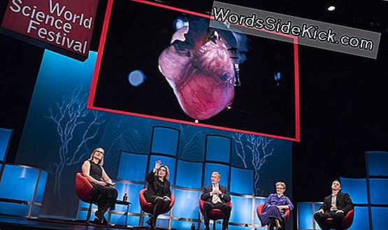 10. Årlige World Science Festival Skopper Off I Nyc: Se Begivenhederne Online
