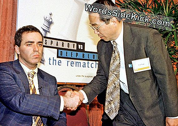 Deep Blue Vs Garry Kasparov: 20-Årsdagen For Epic Chess Match