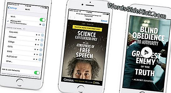 Genius Bot: Chat Med 'Einstein' Via Facebook Messenger