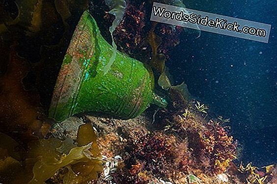 Bronze Bell From Long-Lost Arctic Shipwreck Revealed