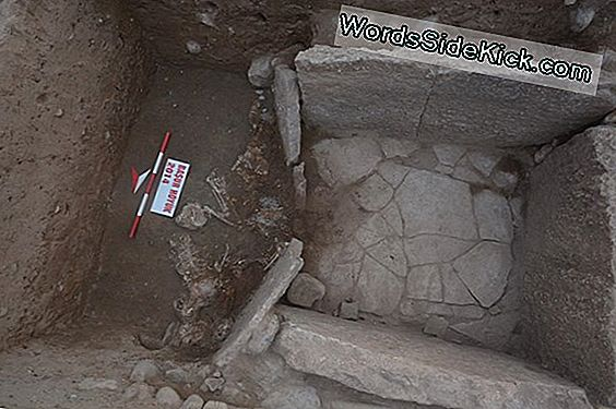 Human Sacrifices Surround Ancient Mesopotamian Tomb