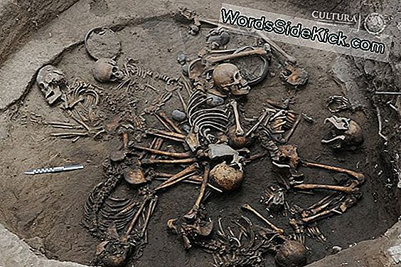 Interlocked Spiral Of Ancient Skeletons Unearthed I Mexico City