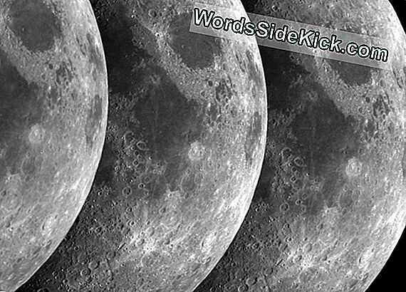 Moonmoons (Moons That Orbit Other Moons) Kunne Eksistere, Siger Forskere