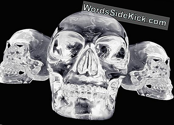 Crystal Skulls: Legend, Vodka & Indiana Jones