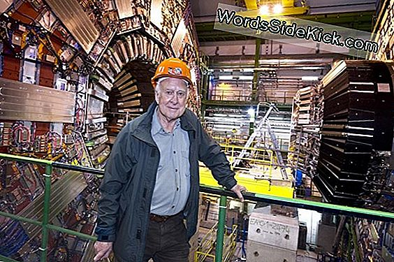 Suche Nach Elusive Higgs Boson Particle On Hold Bis 2012