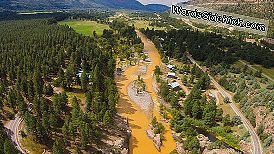 Colorado Mine Spill Aftermath: So Reinigen Sie Einen Fluss