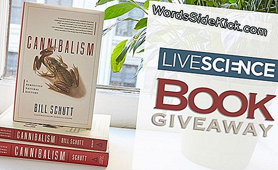WordsSideKick.com Book Giveaway: 'Cannibalism' Por Bill Schutt