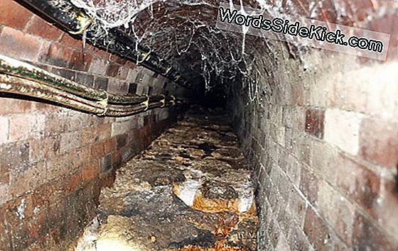 Monster 'Fatberg': 143 Ton Vet En Vuilnisbel Uk Riool