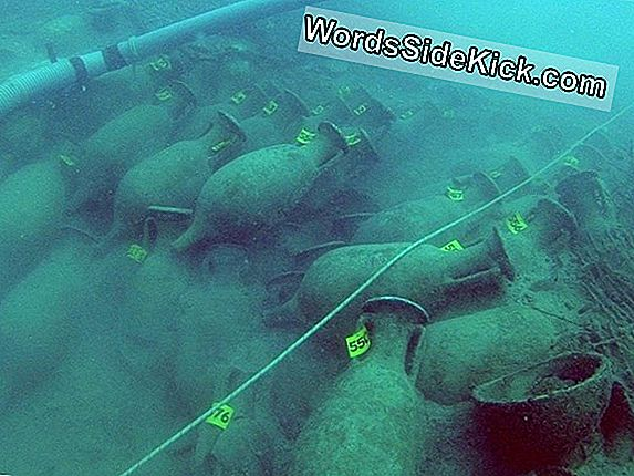 Islas Hundidas Antiguas Encontradas En California