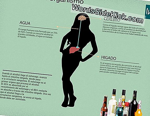 Alcohol Y Resaca Mitos Revelados