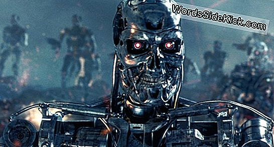 'Rise Of The Machines' No Es Un Futuro Probable (Op-Ed)