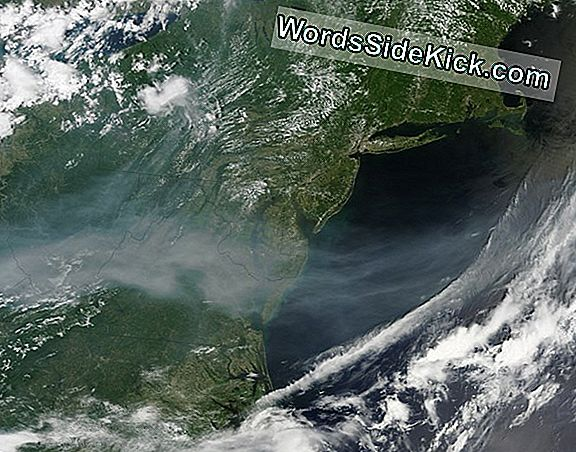 Afbeelding: Northwest Wildfire Smoke Reaches Atlantic