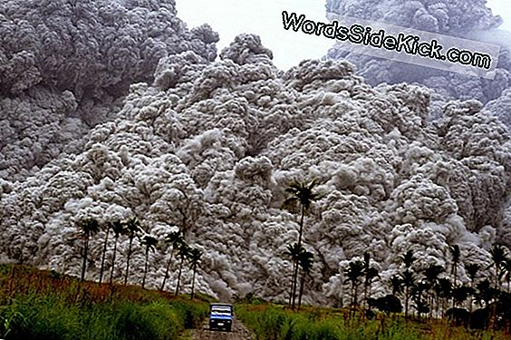 Pinatubo Flashback, 10 De Junio De 1991: Hasty Evacuation