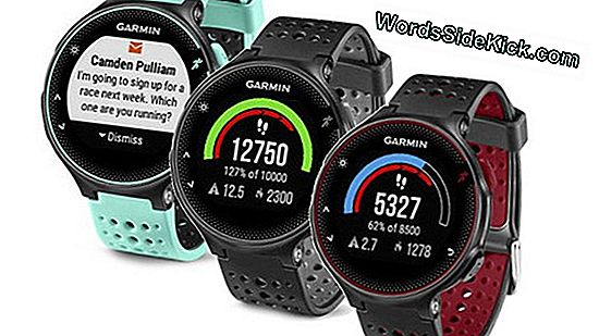 Garmin Swim Review: Reloj Swim-Tracker