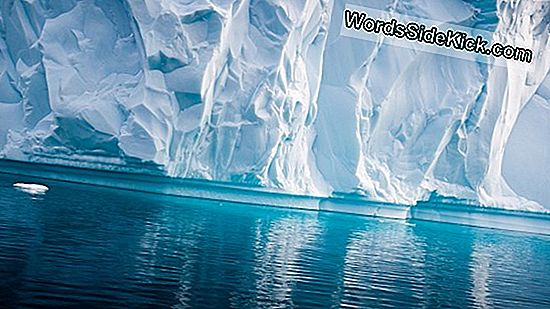 Monster Antarctic Iceberg Obtiene Su Gran Oportunidad En El Primer Video De Su Tipo