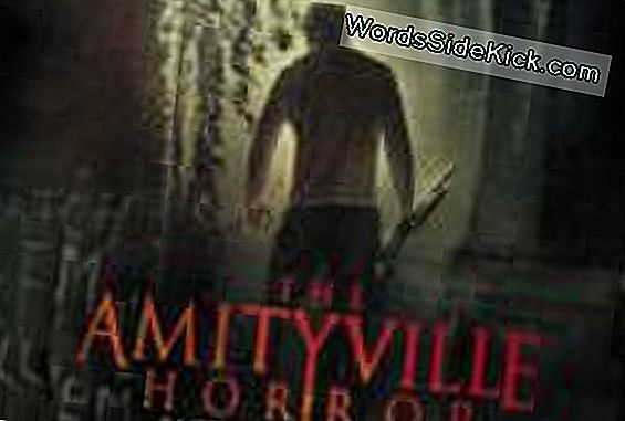 Põhjus Voice: The Truth Behind Amityville Horror