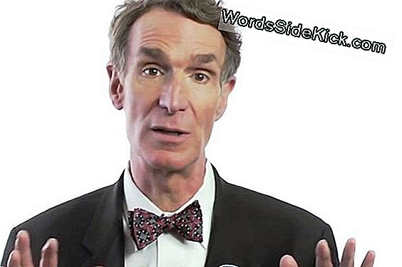 Bill Nye, Et Debatt Creationist Teooria Evolution