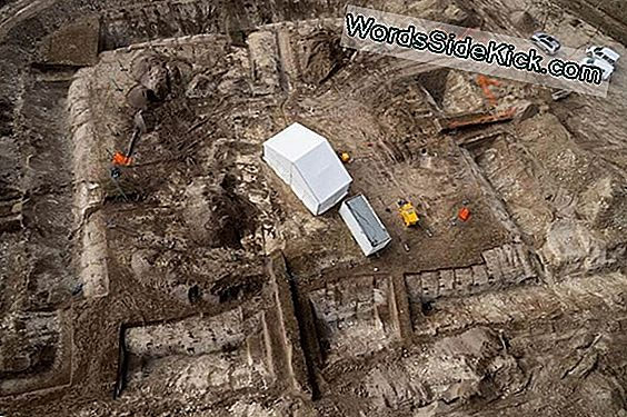 Ancient Celtic Prince'S Chapel And Chariot Unearthed