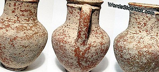 Ancient Roman Jar Riddled Koos Mystery
