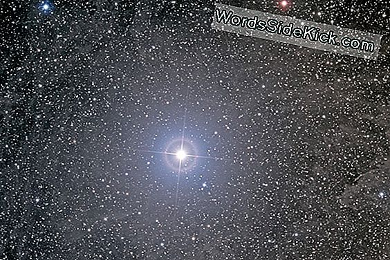 North Star: Polaris