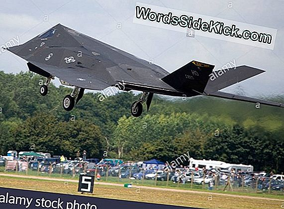 Lockheed F-117A Nighthawk Stealth Fighter