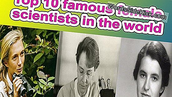 12 Amazing Women Who Totally Rocked Science