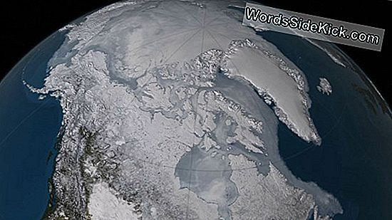 Record-Low Arctic Sea Ice On