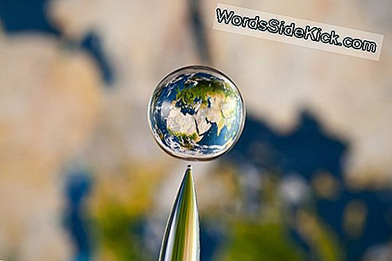 Kuvaajalla Captures Worlds In A Drop Of Water