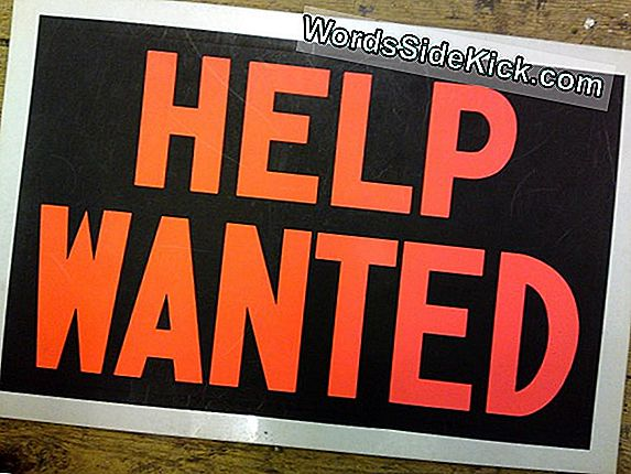 Help Wanted: Bigfoot-Tutkija