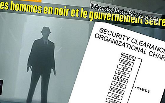Ovnis Et Secret Du Gouvernement