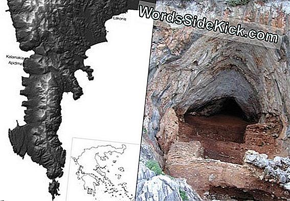 Trove Of Neanderthal Bones Gevonden In Greek Cave