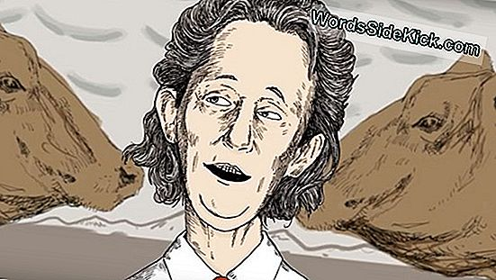 The Experimenters: Temple Grandin On The Autistic Brain