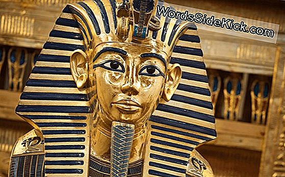 The Curse Of King Tut: Fatti E Favole