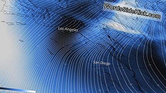 Santa Ana Winds Return... With A Fire Threat
