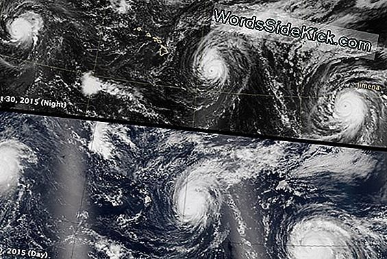 Satellite Vede 3 Storms Swirling Across Pacific Ocean